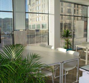 stanza o ufficio con tavolo, sedie e piante